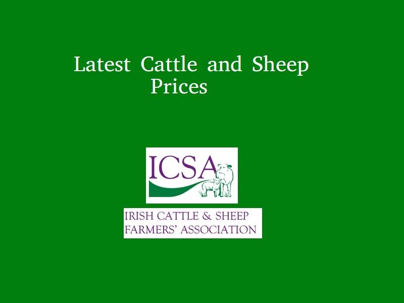 Latest ICSA Cattle and Sheep Prices