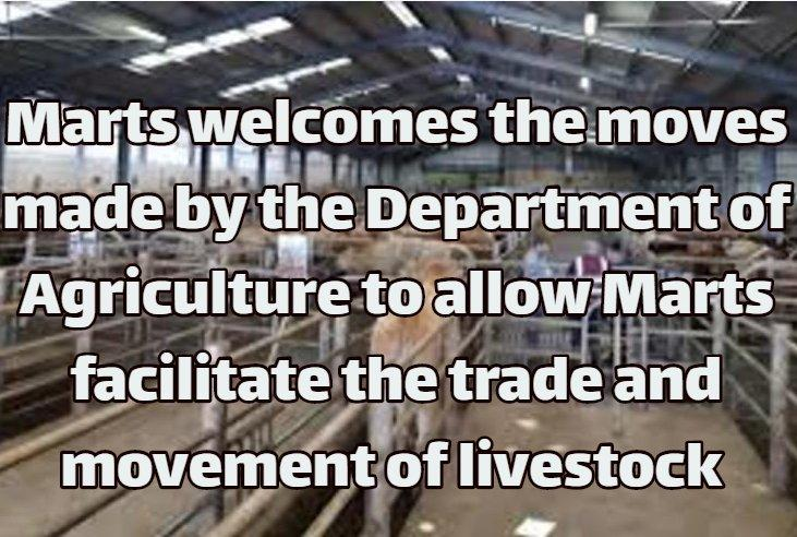Marts welcome moves to facilitate Mart Trade  and livestock  movement